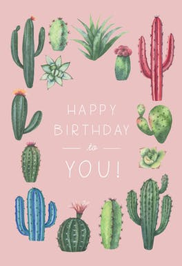 Cactus Birthday - Happy Birthday Card