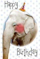 Cute Elephant - Birthday Card