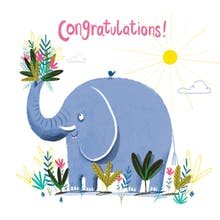 big deal congratulations card - Congratulations Cards