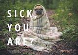 Woof Wisdom - Get Well Soon Card