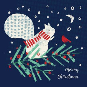 Arty Squirrel - Christmas Card