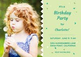 Zigzag Meridian - Birthday Invitation